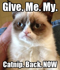 Poster: Give. Me. My. Catnip. Back. NOW