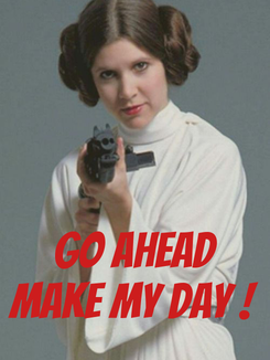 Poster:    GO AHEAD MAKE MY DAY !