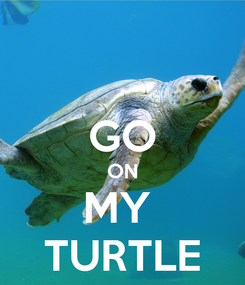 Poster:  GO ON MY  TURTLE