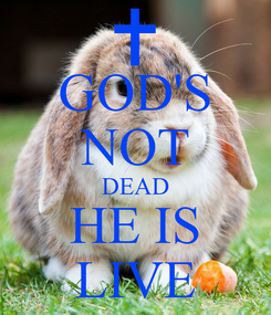 Poster: GOD'S NOT DEAD HE IS LIVE