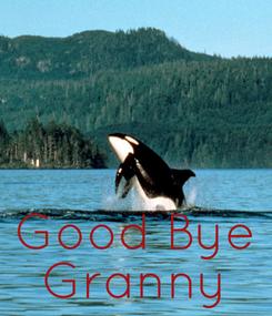 Poster: Good Bye Granny