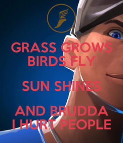 Poster: GRASS GROWS BIRDS FLY SUN SHINES AND BRUDDA I HURT PEOPLE