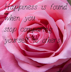 Poster:  Happiness is found   when you  stop comparing  yourself to others