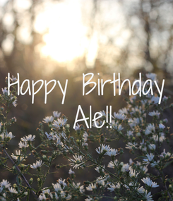 Poster: Happy Birthday  Ale!!
