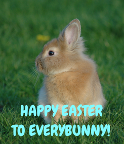 Poster:    HAPPY EASTER TO EVERYBUNNY!
