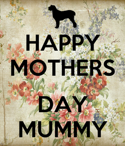 Poster: HAPPY MOTHERS  DAY MUMMY