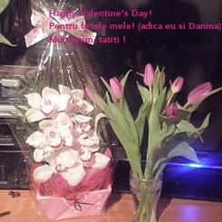 Poster: Happy Valentine's Day! Pentru fetele mele! (adica eu si Danina) Multumim, tatiti !