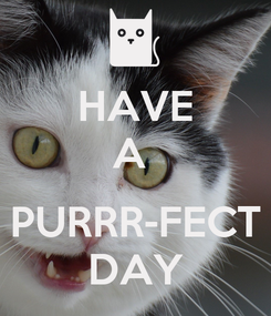 Poster: HAVE A   PURRR-FECT DAY