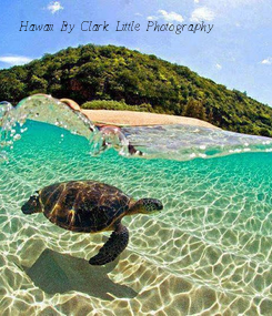 Poster: Hawaii By- Clark Little Photography