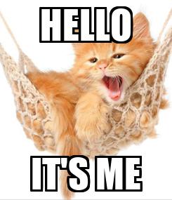Poster: HELLO IT'S ME