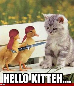 Poster:  HELLO KITTEH....