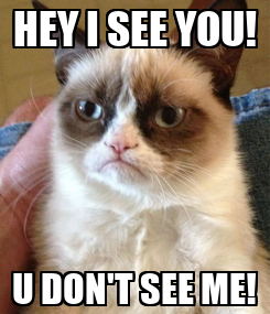 Poster: HEY I SEE YOU! U DON'T SEE ME!