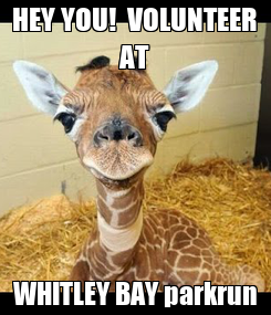 Poster: HEY YOU!  VOLUNTEER AT WHITLEY BAY parkrun