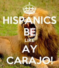 Poster: HISPANICS BE LIKE AY CARAJO!