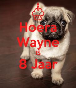 Poster: Hoera Wayne IS 8 Jaar