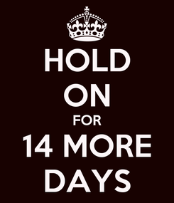 Poster: HOLD ON FOR 14 MORE DAYS