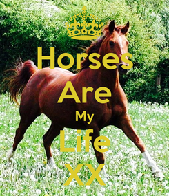 Poster: Horses Are My Life XX