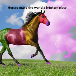 Poster: Horses make the world a brighter place
