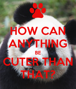 Poster: HOW CAN ANYTHING BE CUTER THAN THAT?