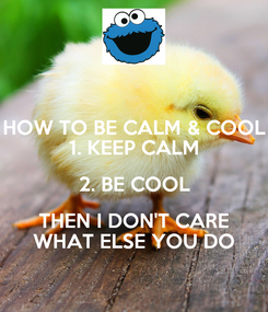 Poster: HOW TO BE CALM & COOL 1. KEEP CALM 2. BE COOL THEN I DON'T CARE WHAT ELSE YOU DO