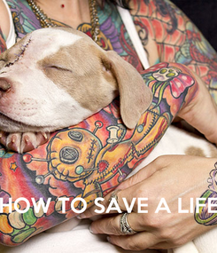 Poster:     HOW TO SAVE A LIFE
