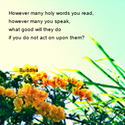 Poster: However many holy words you read,  however many you speak,  what good will they do  if you do not act on upon them?    .......Buddha
