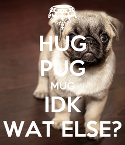 Poster: HUG PUG MUG IDK WAT ELSE?