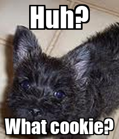Poster: Huh? What cookie?