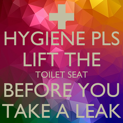 Poster: HYGIENE PLS LIFT THE TOILET SEAT BEFORE YOU TAKE A LEAK