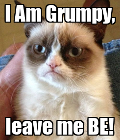 Poster: I Am Grumpy, leave me BE!