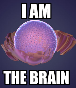 Poster: I AM  THE BRAIN
