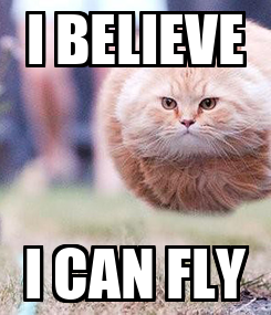 Poster: I BELIEVE I CAN FLY