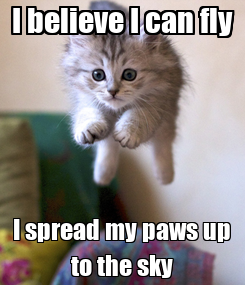 Poster: I believe I can fly I spread my paws up to the sky