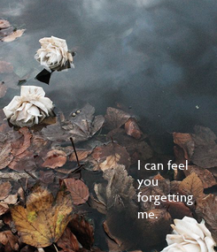 Poster: I can feel you forgetting me.