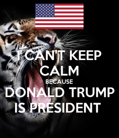 Poster: I CAN'T KEEP CALM BECAUSE DONALD TRUMP IS PRESIDENT