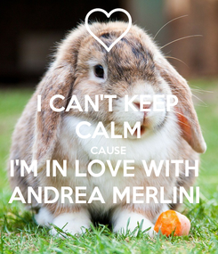 Poster: I CAN'T KEEP CALM CAUSE I'M IN LOVE WITH  ANDREA MERLINI