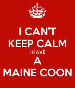 Poster: I CAN'T KEEP CALM I HAVE A MAINE COON