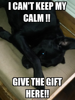 Poster: I CAN'T KEEP MY CALM !!  GIVE THE GIFT HERE!!