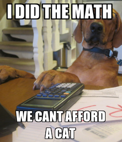 Poster: I DID THE MATH  WE CANT AFFORD A CAT