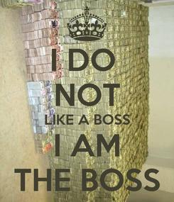 Poster: I DO  NOT LIKE A BOSS I AM THE BOSS