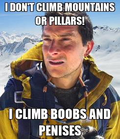 Poster: I DON'T CLIMB MOUNTAINS OR PILLARS! I CLIMB BOOBS AND PENISES