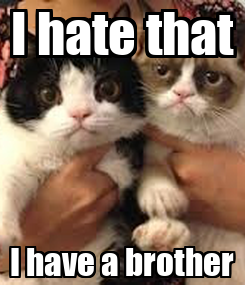 Poster: I hate that I have a brother