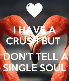 Poster: I HAVE A CRUSH BUT    DON'T TELL A SINGLE SOUL