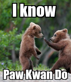 Poster: I know  Paw Kwan Do