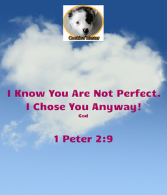 Poster: I Know You Are Not Perfect. I Chose You Anyway! God  1 Peter 2:9
