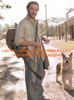 Poster: I LET YOU DOWN, TAIL BETWEEN MY LEGS I'M A PUPPY FOR YOUR LOVE