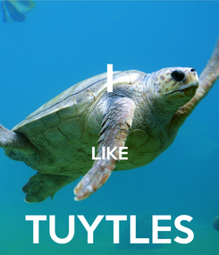 Poster: I  LIKE  TUYTLES