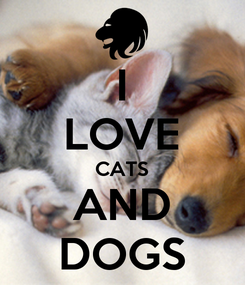 Poster: I LOVE CATS AND DOGS