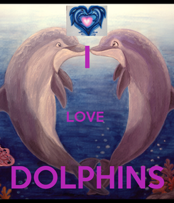 Poster: I  LOVE   DOLPHINS