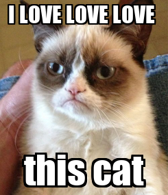 Poster: I LOVE LOVE LOVE  this cat